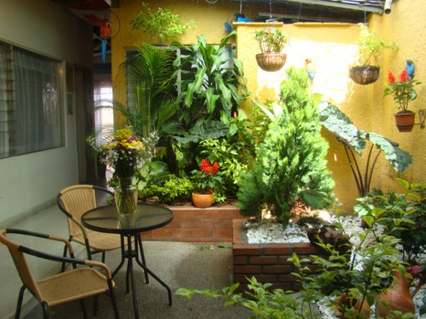 beautiful and relaxed garden